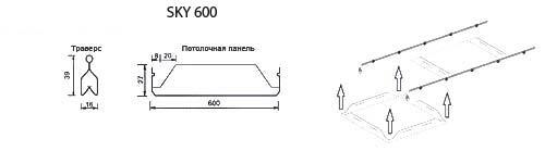 sky-600